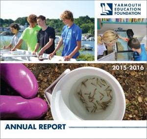 2016yefannualreport_cover